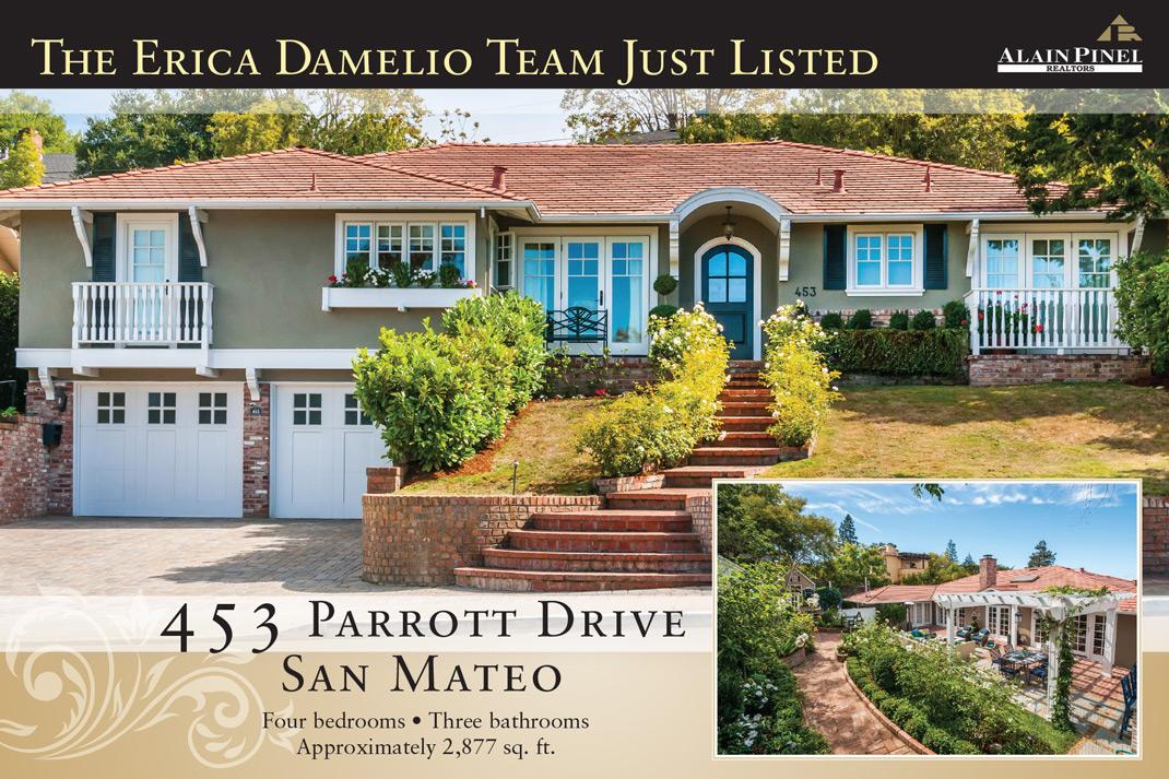 Parrot Drive Postcard